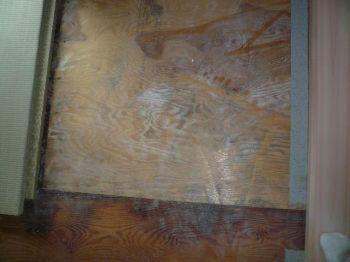 畳下地材のカビ